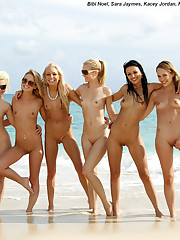 Six Lesbian Pornstars Drunk and Out of Control on a Public Beach - 1/31/2012